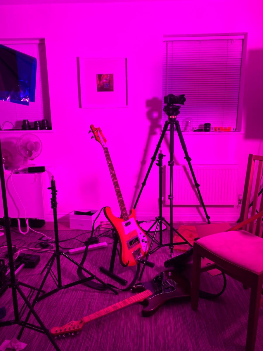Rickenbacker Hondo II Bass Guitar